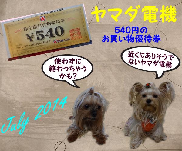 (318)2014年07月到着 ヤマダ電機