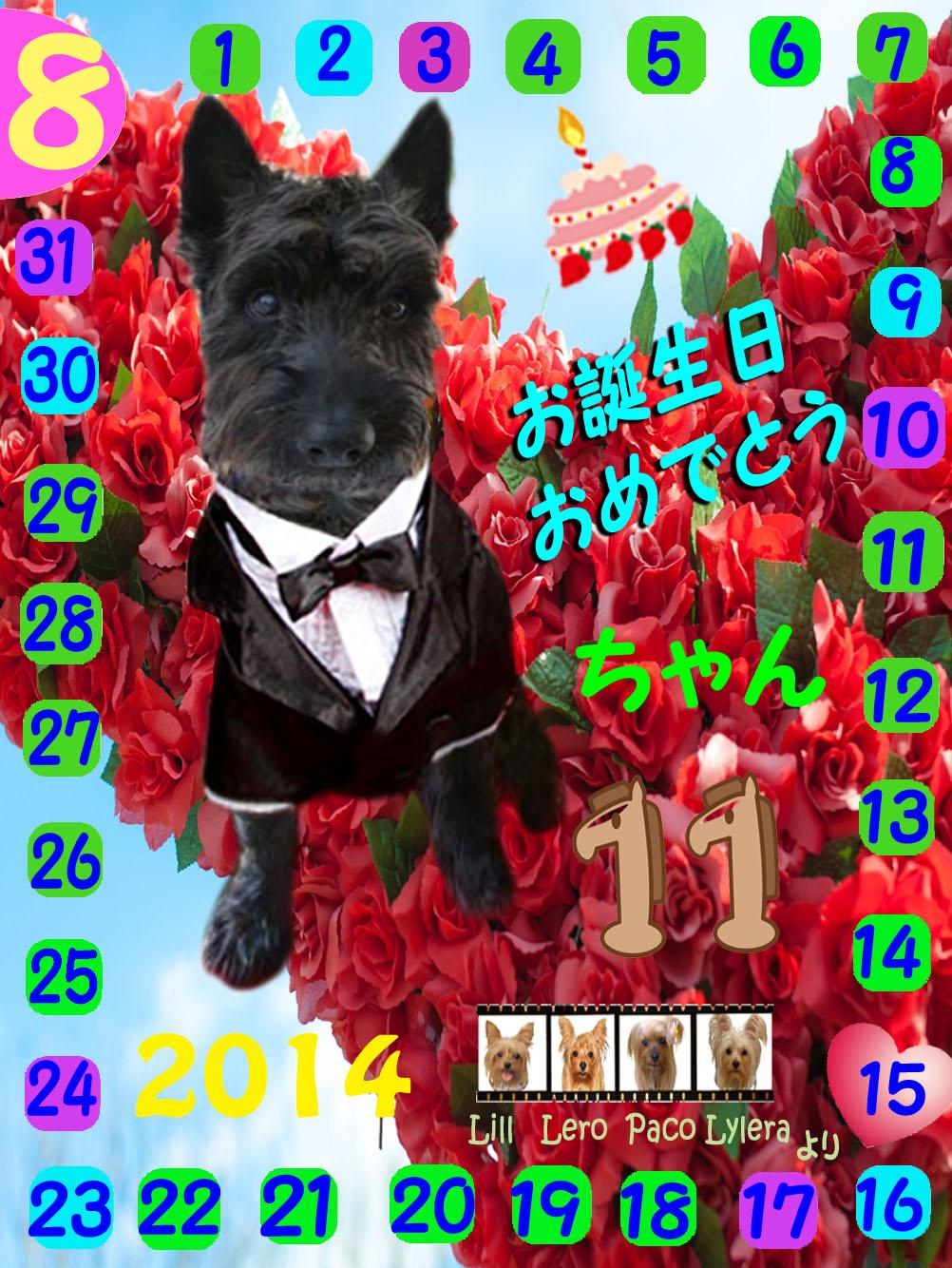 08152014ミントくん誕生日カード