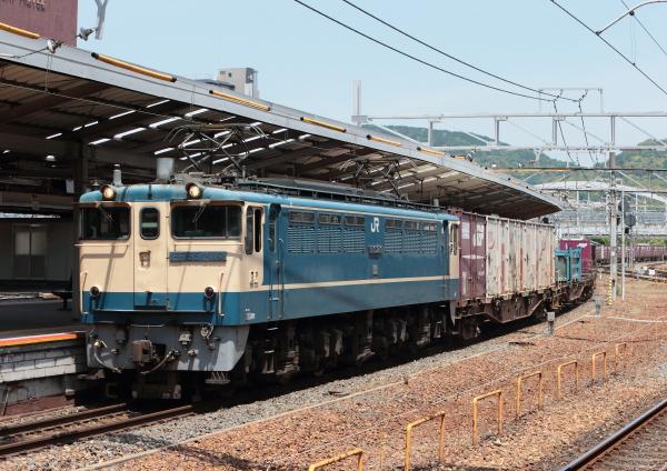 AM9P2004_1.jpg