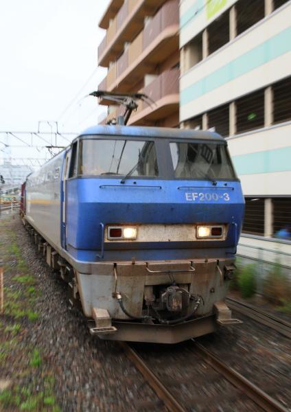 AM9P2141_1.jpg