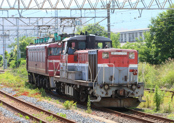 AM9P3054_1.jpg