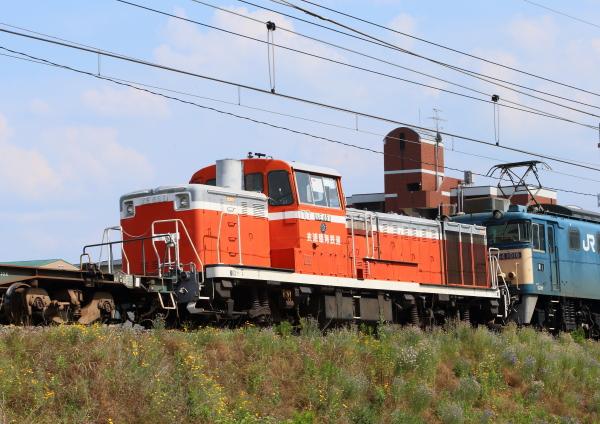 AM9P3062_1.jpg