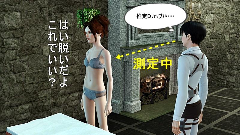 進撃の巨人 20140317 (31)