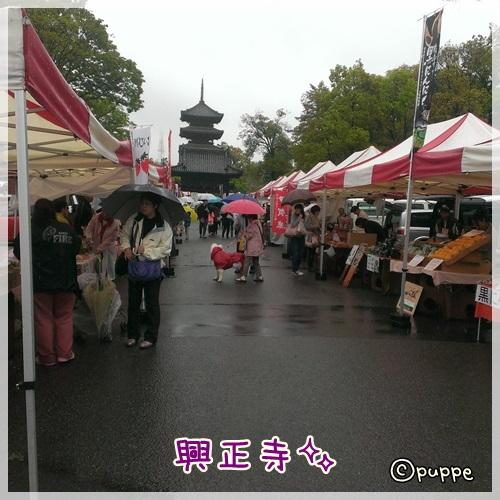 2014-04-21-11-27-58_photo.jpg