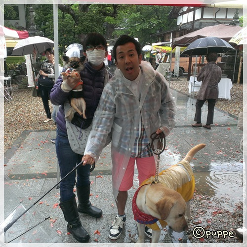 2014-04-21-11-51-55_photo.jpg