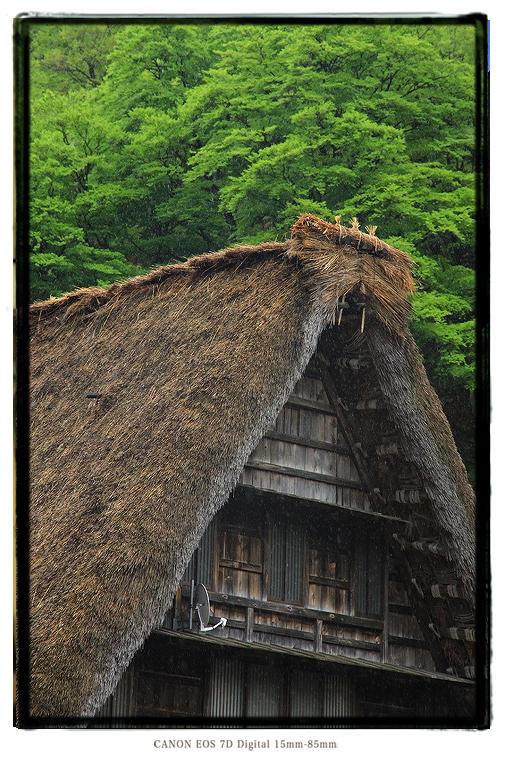 1305gifutoyama05.jpg