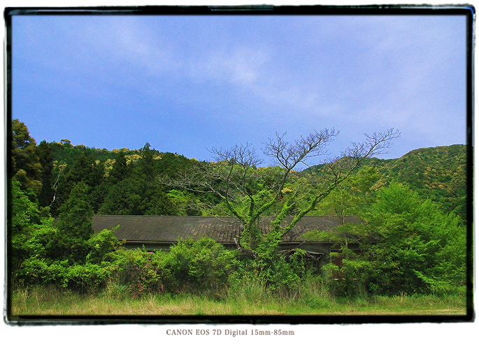 1405GWshikoku0103.jpg