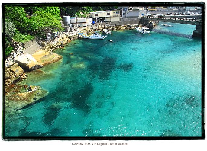 柏島1405GWshikoku0118.jpg