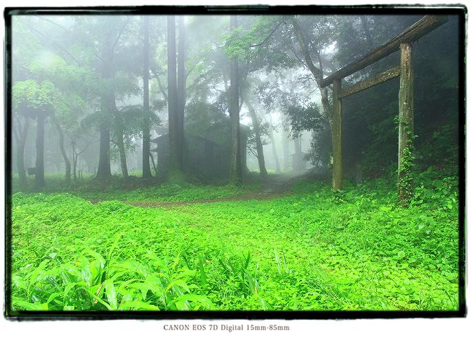 粟ヶ岳の廃神社の鳥居1406TempleRuins09.jpg