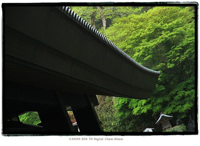 201105shikoku25.jpg