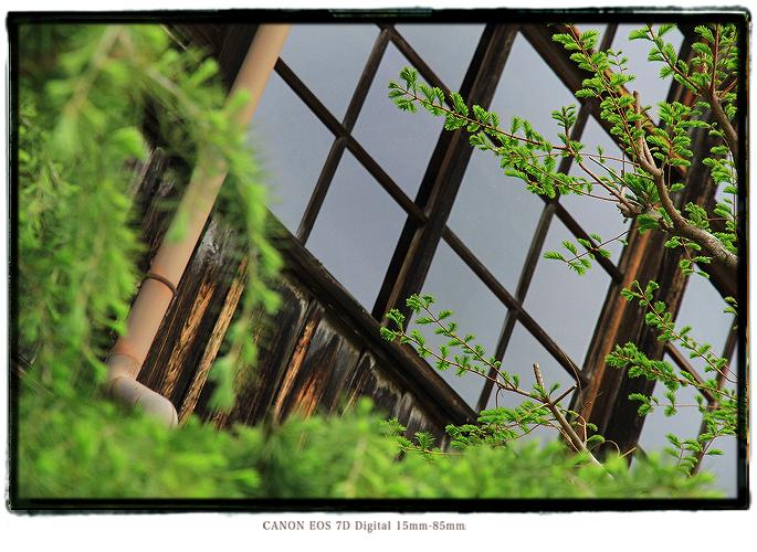201105shikoku29.jpg