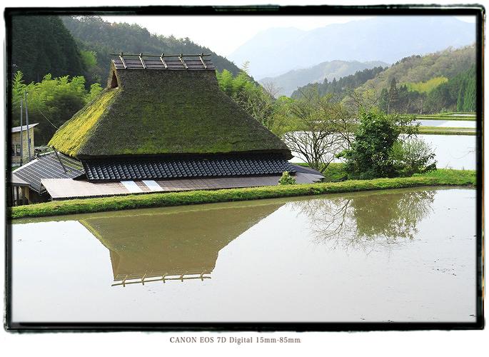 201105shikoku31.jpg