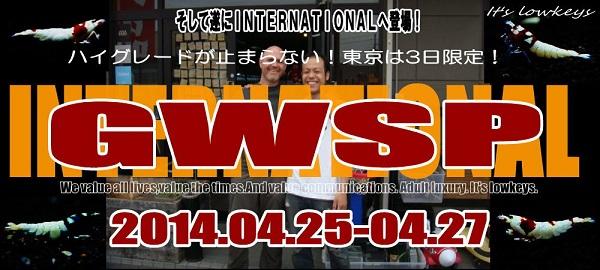 GWSP2014ITN2.jpg
