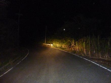 喜界島の夜道
