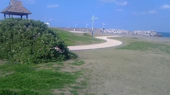 喜界島の港裏