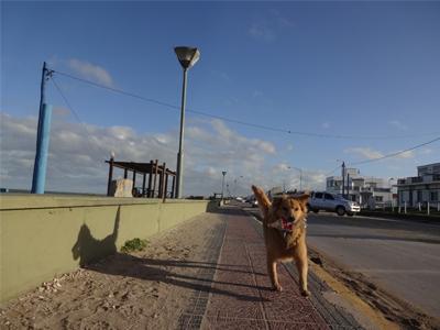 santaclara02.jpg