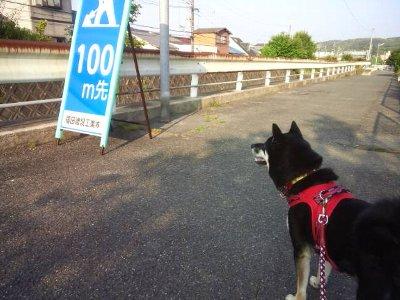 kensyou20614.jpg