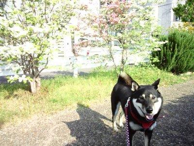 mizuki0426.jpg