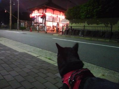 yorujizou0823.jpg