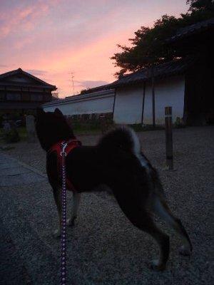 yuuyake0615.jpg