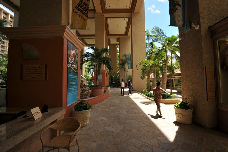 ハワイ ホテル敷地内を散策中にプラット一枚