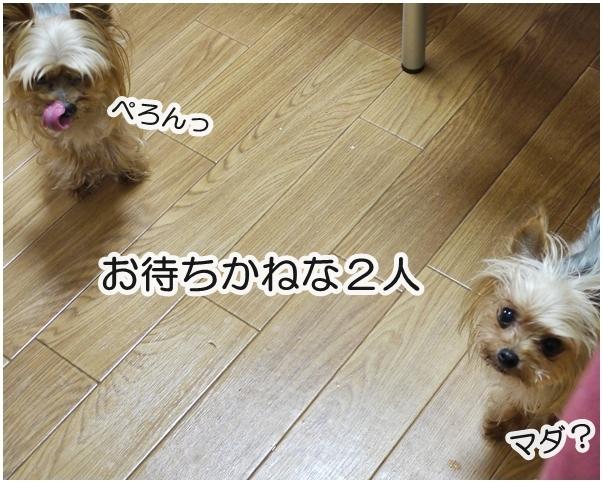 3_20140408061301ee2.jpg