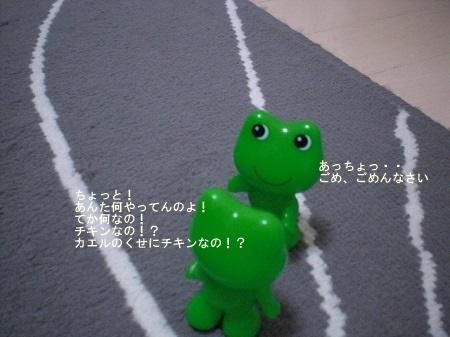CIMG4165.jpg
