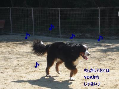 004_convert_20140325210717.jpg