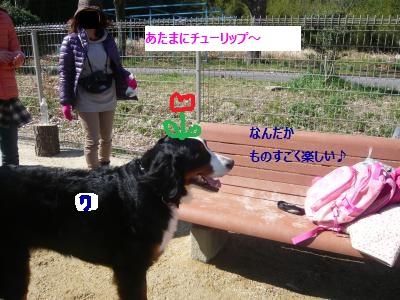 009+(2)_convert_20140325205448.jpg