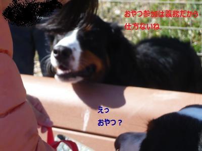 014+(3)_convert_20140325220312.jpg