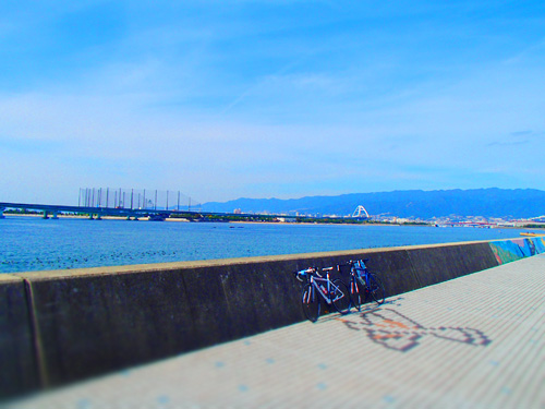 cycling_05