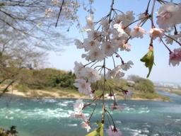 木曽川が蒼くてキレイですね