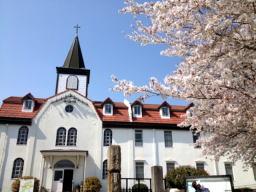 修道院の桜は絵になりますね~