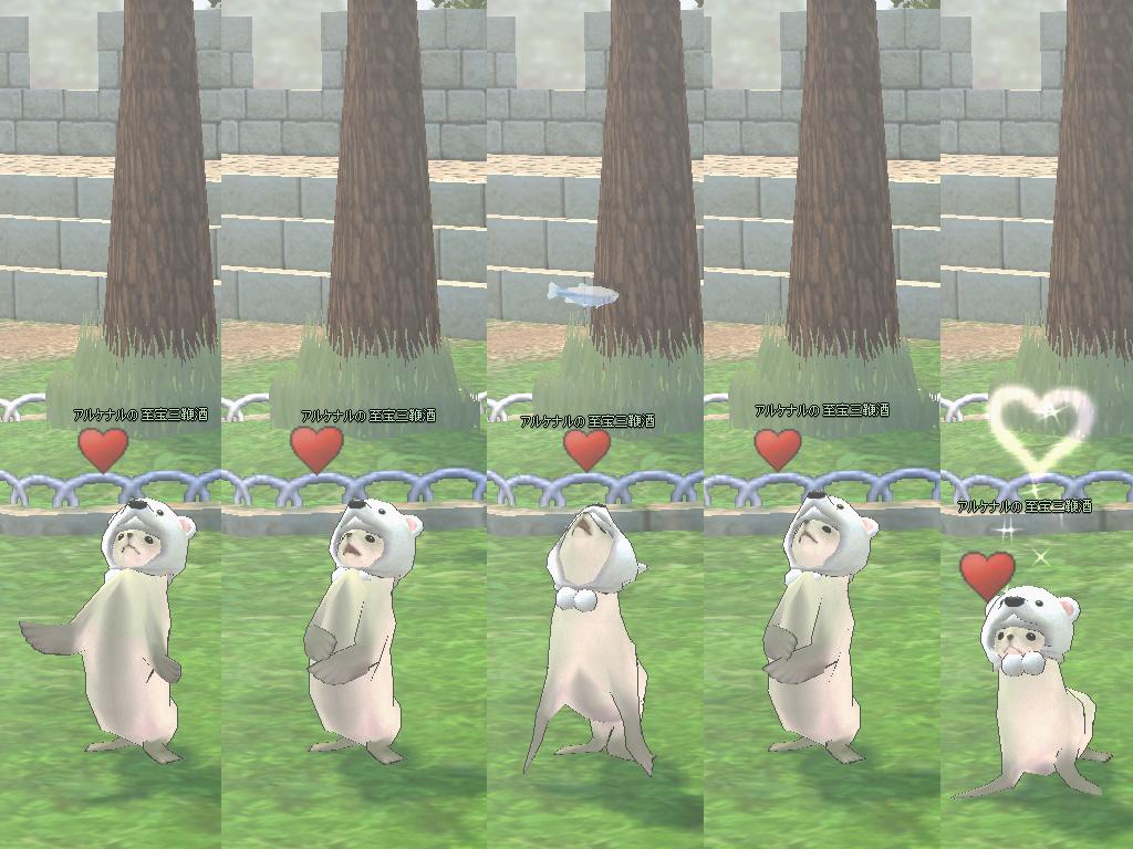 白クマ帽子オットセイ2
