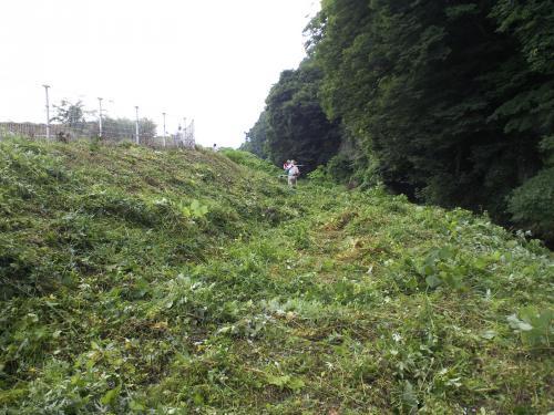 草刈り終了(26.7.16)