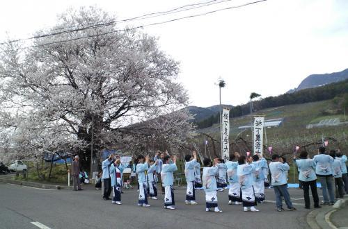 「千歳桜音頭」踊り奉納(26.4.20)