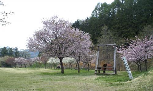どんぐりの森公園(26.5.5)