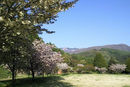 どんぐりの森公園(26.5.13)