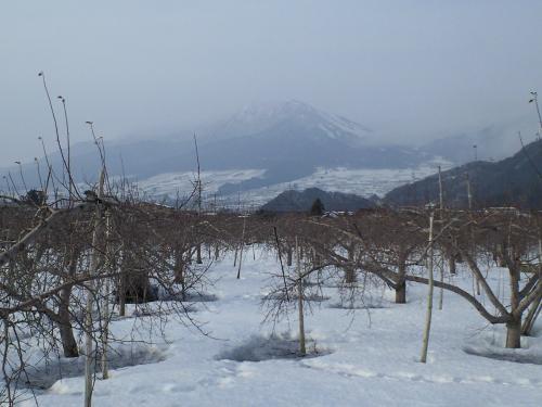 今日の高社山(26.2.28)