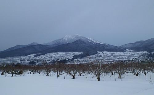 上条からの高社山(26.3.6)