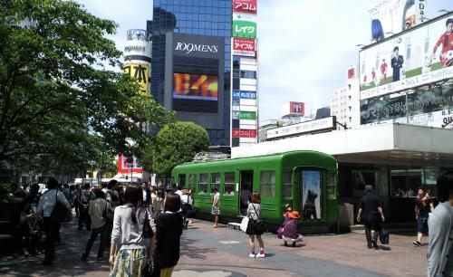 ハチ公前広場にアオガエル(26.5.28)