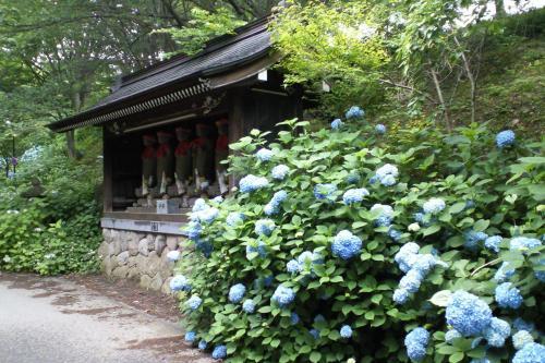 六地蔵と紫陽花(26.7.3)