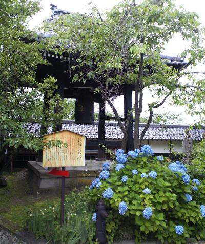 鐘楼と紫陽花(26.7.3)