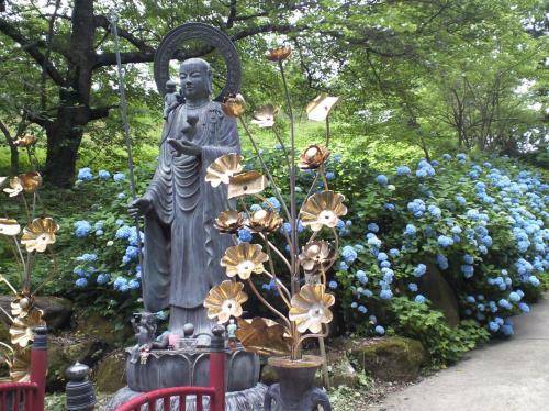 水子地蔵と紫陽花(26.7.3)