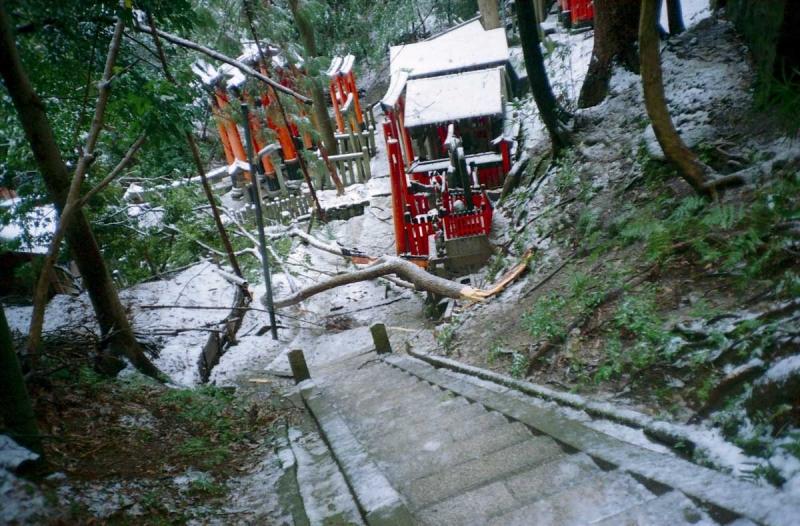 雪の熊鷹社4