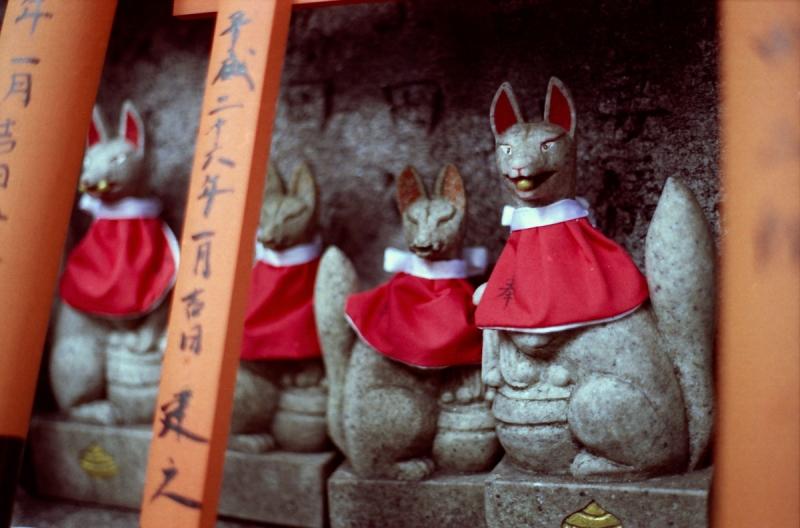 三の峰の狐01