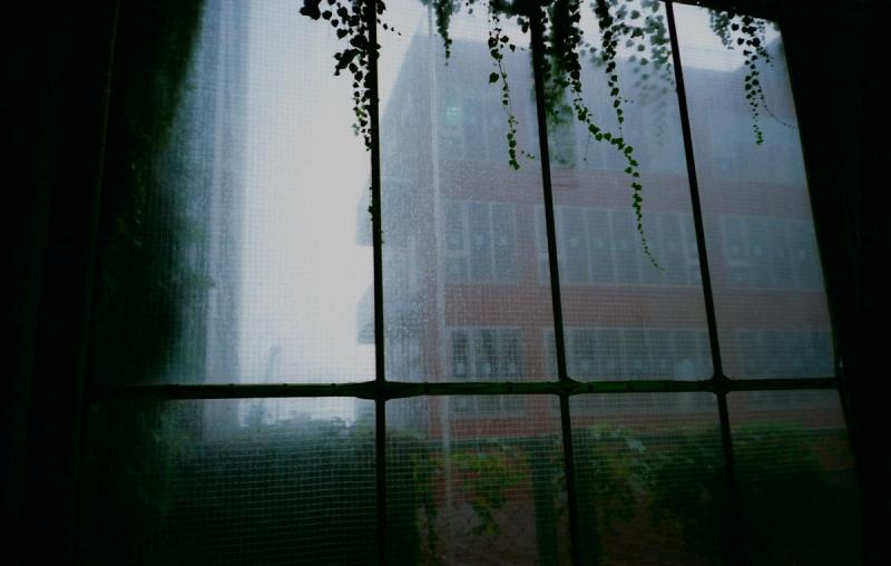 雨の日の窓2
