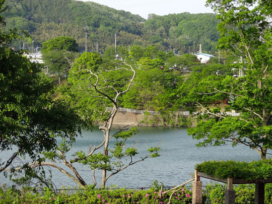 津久井湖②