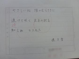P1080898-1.jpg