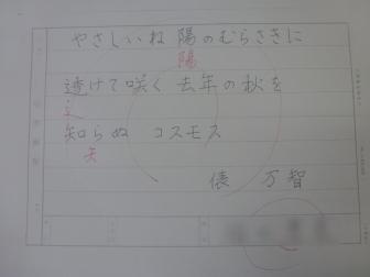 P1080899-1.jpg